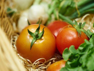 Les premières tomates de l'année sont là !